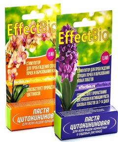 Цитокининовая паста дляразмножения орхидей идругих комнатных растений, фото, картинки, цена, купить